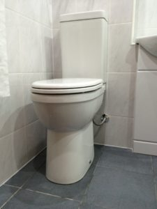 Comfort height disabled wc